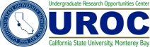 Undergraduate Research Opportunity Center(UROC)