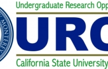 Undergraduate Research Opportunity Center (UROC)