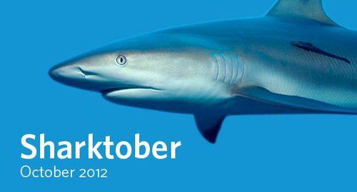 CAS Sharktober 2012