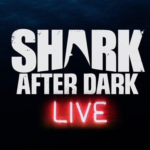Shark After Dark After Show (Aug 12,2014)